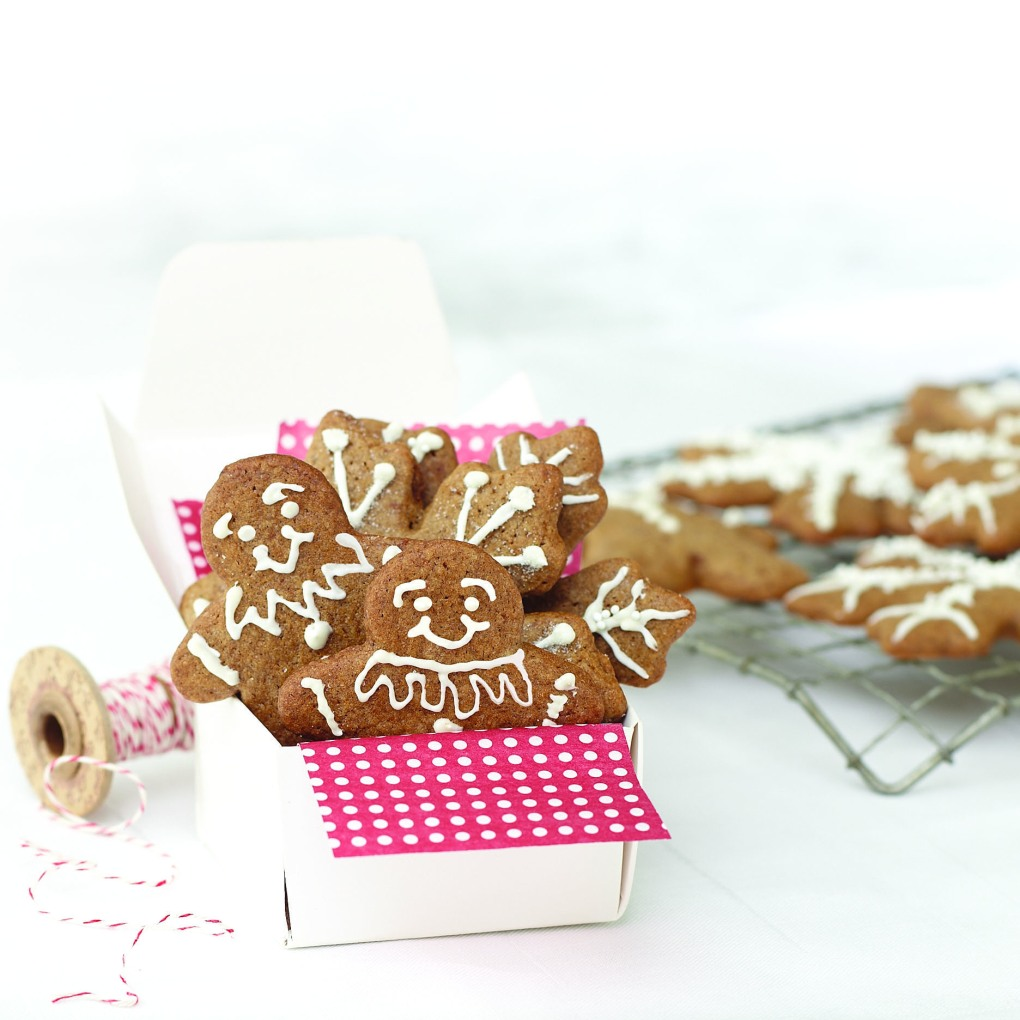 Gingerbread_cookie_mix_2